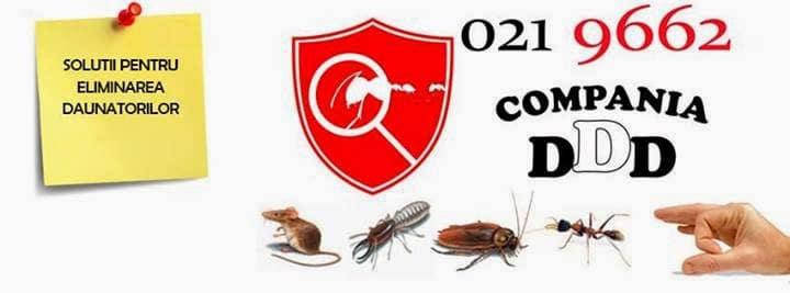 Compania DDD - dispariția gândacilor
