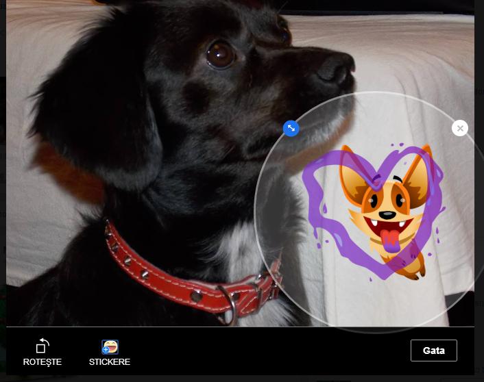 stickere peste pozele de pe facebook
