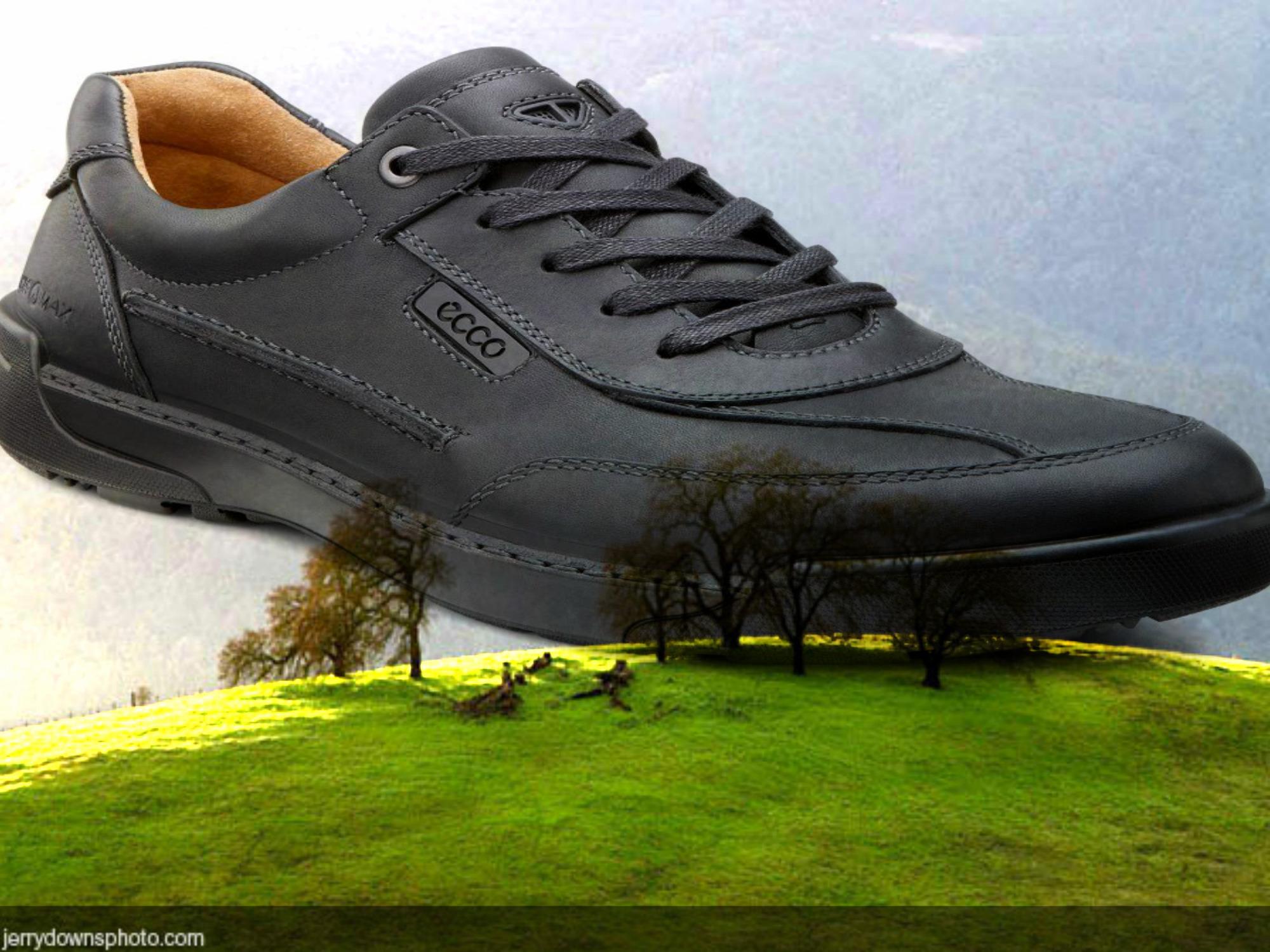 pantofi ecco shoes
