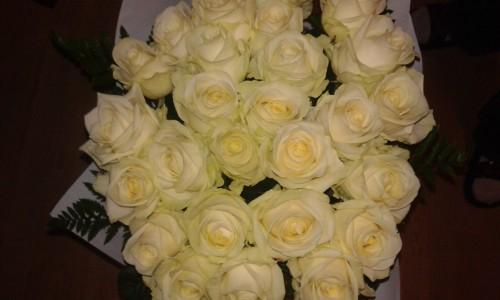 buchet mare de trandafiri albi