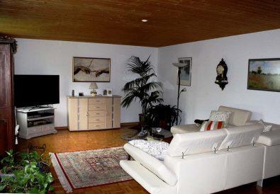 transformi total sufrageria