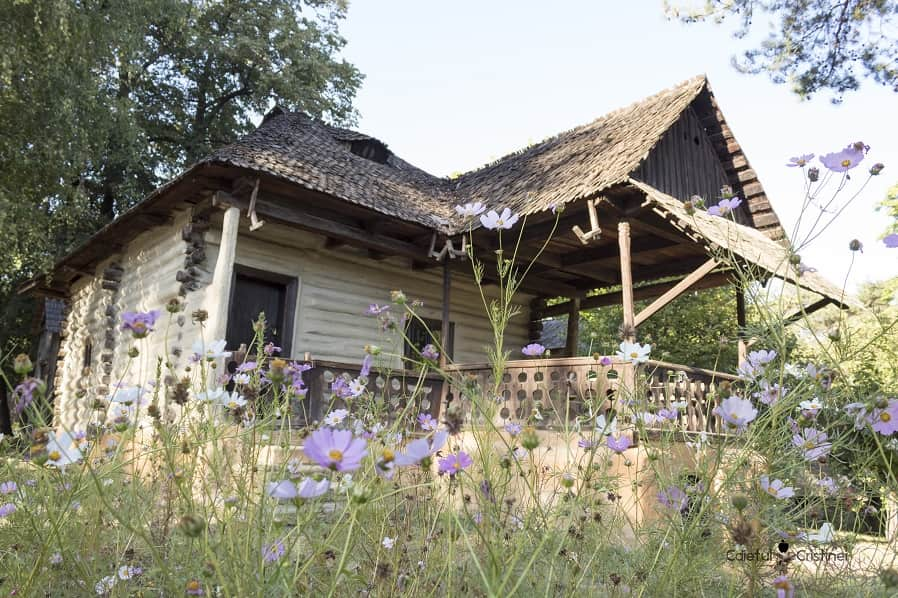 vizita muzeul satului