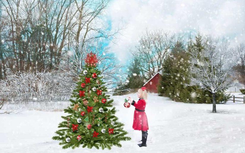 Crăciun de vis