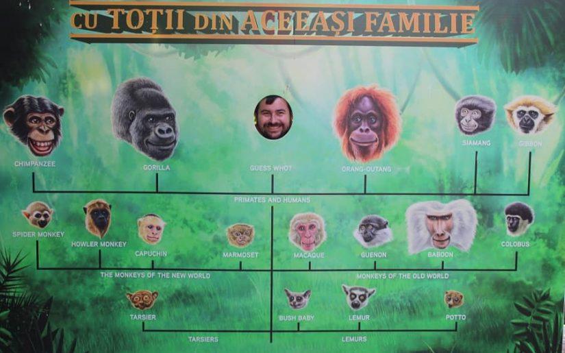 grădina zoologică București Băneasa