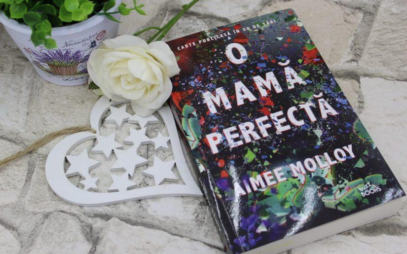 O mamă perfectă - Aimee Molloy