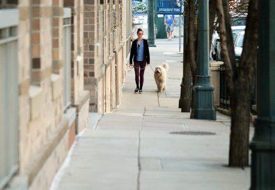 mersul pe jos cu cainele