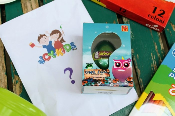 Poiect surpriza Joy-Kids