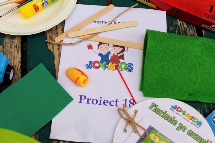 Proiect 18 Joy-Kids