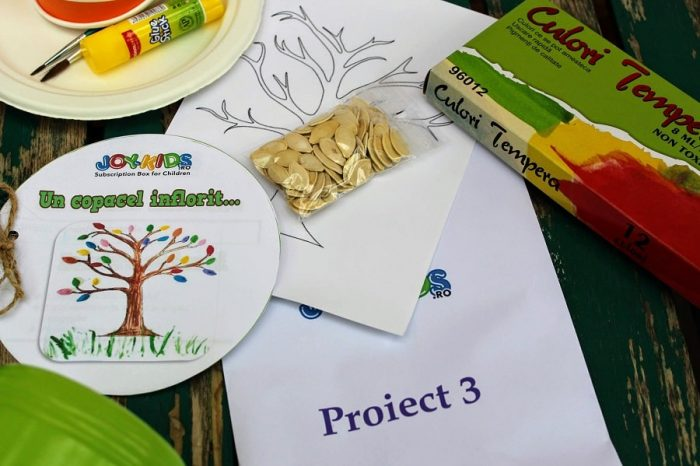 Proiect3 Joy-Kids