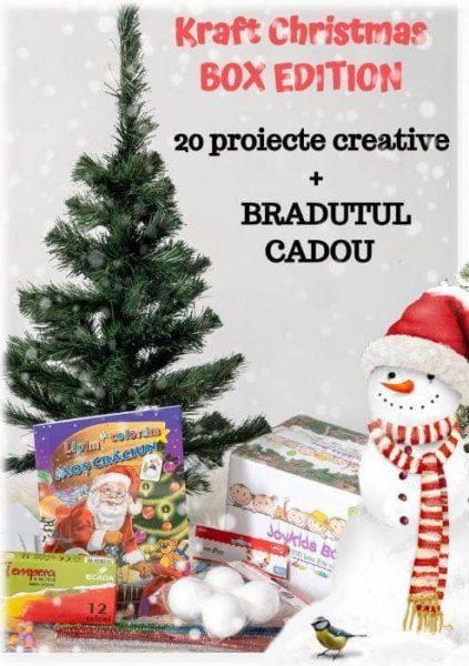 bradut-cadou-cutie-activitati-joy-kids