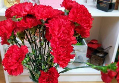 garoafe rosii
