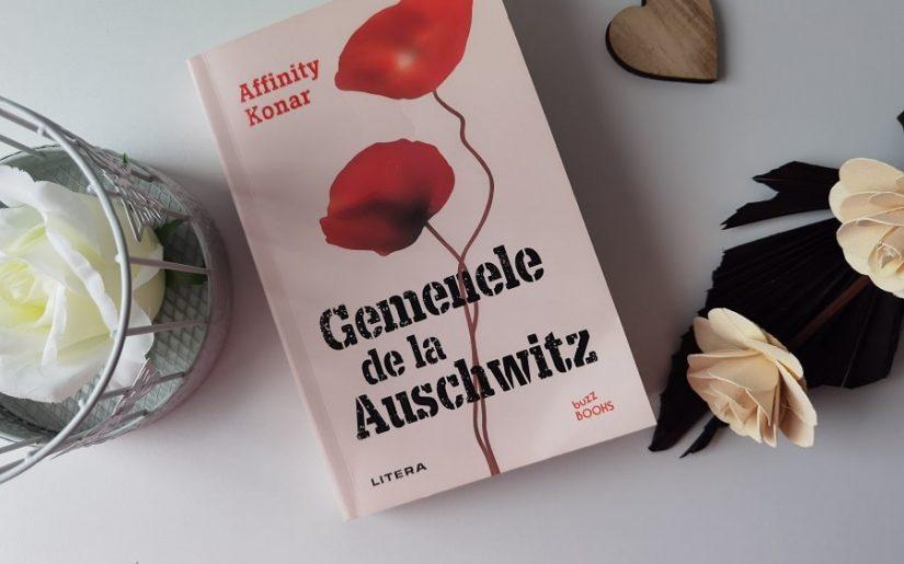 Gemenele de la Auschwitz, Affinity Konar